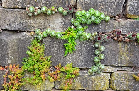 garten gestalten gräser gartenmauer mediterran verputzt gartenmauer gestalten
