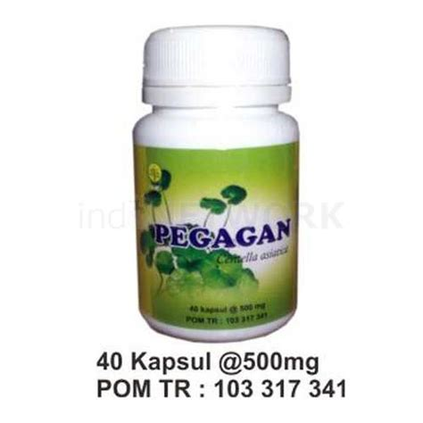 Obat Herbal Insani kapsul pegagan herbal insani pusat herbal gresik