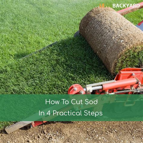 how to cut weeds in backyard 100 how to cut weeds in backyard how to install sod how tos diy how to get rid