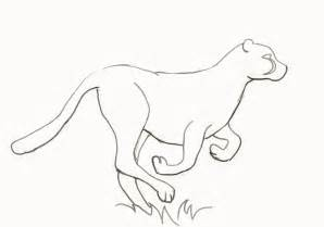 cheetah template how to draw a cheetah step by step