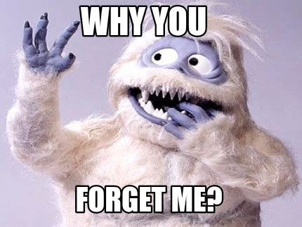 Why You Meme - meme creator why you forget me meme generator at