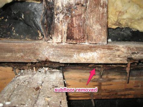 Water Damaged Floor Joists joists water damage in shower stall doityourself