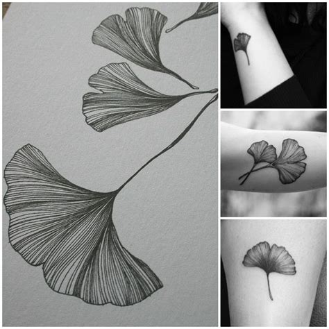 ginkgo leaf tattoo best 25 leaf tattoos ideas on leaf