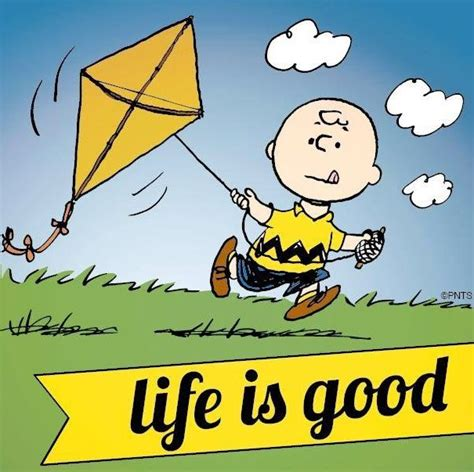 Life Is Great Meme - quot life is good quot quote and charlie brown cartoon via www