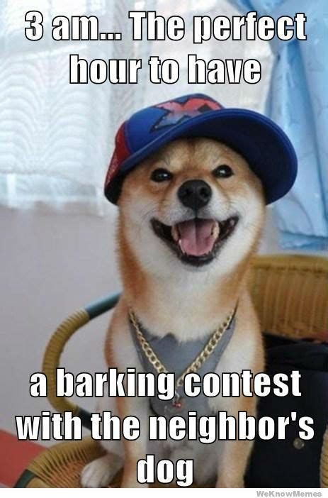 Barking Dog Meme - scumbag dog meme weknowmemes