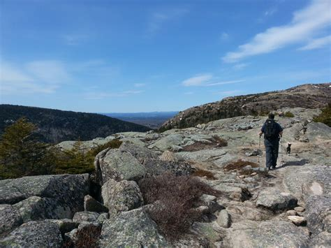 cadillac mountain trails acadia cadillac mountain south ridge trail hammock