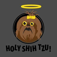 holy shih tzu shih tzu s and quotes on shih tzu quotes and shih tzus