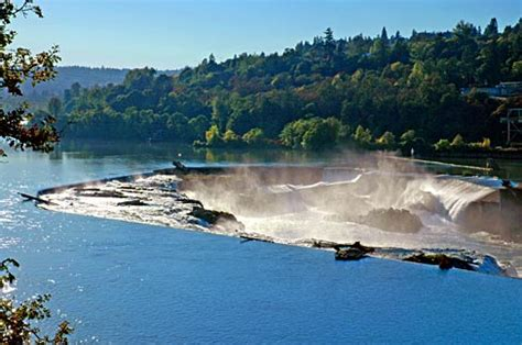 Oregon Records Free Search File Willamette Falls Clackamas County Oregon Scenic Images Clacd0069 Jpg