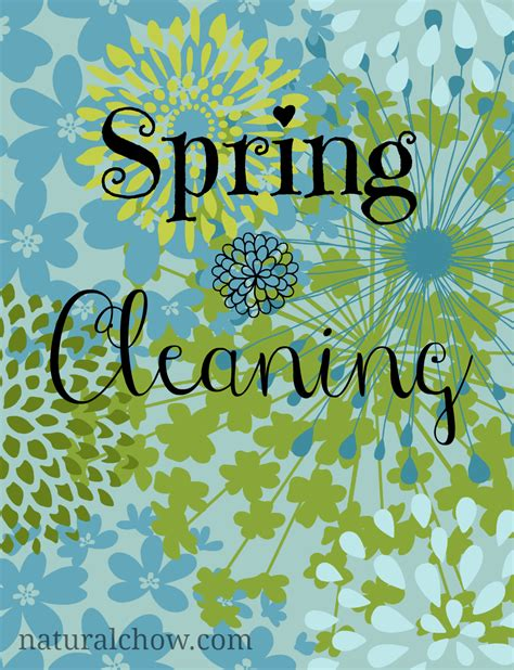 spring cleaners spring cleaning 12 homemade all natural cleaners