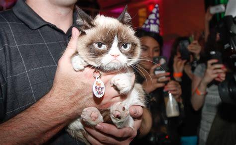Meme Generator Grumpy Cat - grumpy cat meme generator popsugar tech