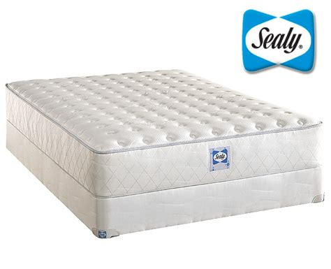 Sealy Mattress Firm by Sealy Firm Innerspring Mattress Sealy Firm Homelement