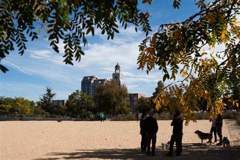 leash park denver denver park dust up