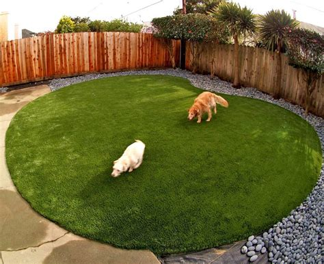 artificial grass for dogs artificial or synthetic grass for run areas