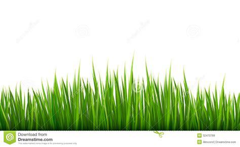 symbol   vector grass images salt marsh grass
