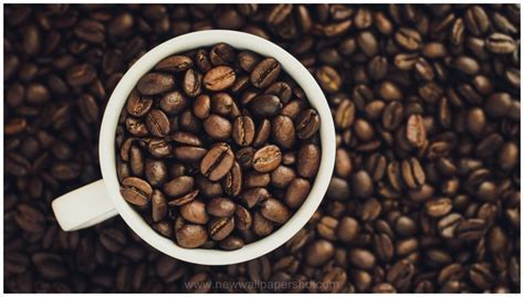 COFFEE GRAINS OF BLACK COFFEE HD WALLPAPER   9 HD Wallpapers