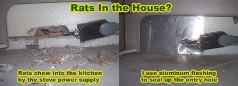 how to get rid of mice in basement how is a rat getting in my house building or attic
