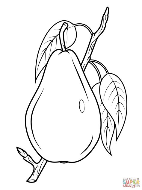 cherry blossom branch coloring pages