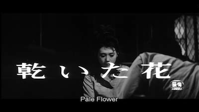 Pale Flower Criterion Collection criterion confessions pale flower 564