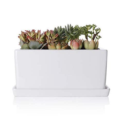 10 inch ceramic planter greenaholics succulent plant pot 10inch rectangler