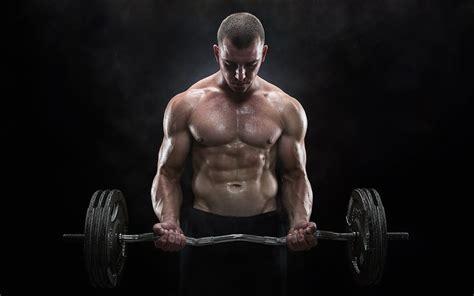 muscular man wallpaper best hd wallpapers