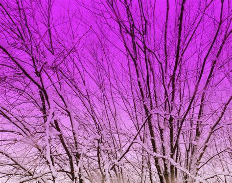 advent colors s advent colors