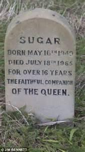 the queen s corgis the queen s corgi graveyard tiny headstones of royal pets