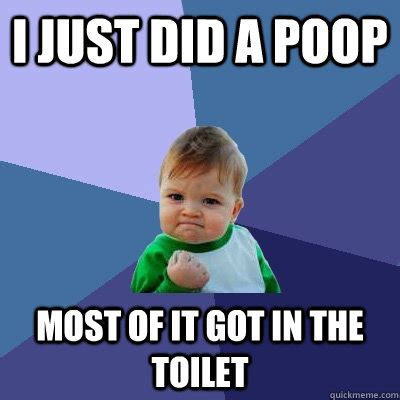Poop Meme - i just did a poop most of it got in the toilet success