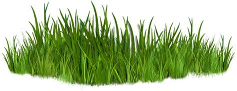 grass clipart best grass clipart 10830 clipartion