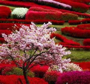 Japanese Garden Flowers Gorgeous Japanese Garden Flowers Gardens
