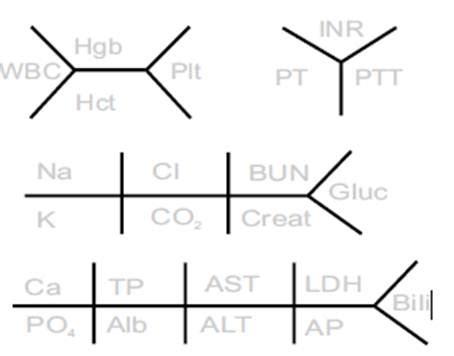 electrolyte diagram lab skeletons quot fishbone quot allnurses