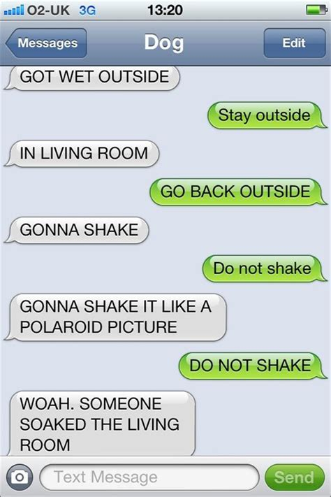 Best Memes To Text - funny texts from dog dump a day