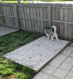 outdoor dog bathroom outdoor potty rock area for the dogs has underground