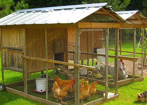 backyard chicken coop ideas chicken coop backyard designs 8 chicken coop ideas designs