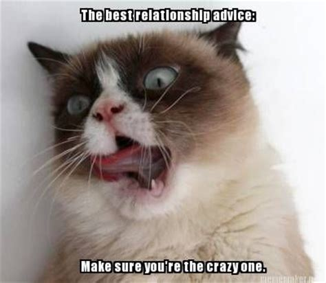 Best Angry Cat Meme - 3073 best images about grumpy cat on pinterest gift