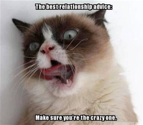 Grumpy Cat Meme Love - 3073 best images about grumpy cat on pinterest gift