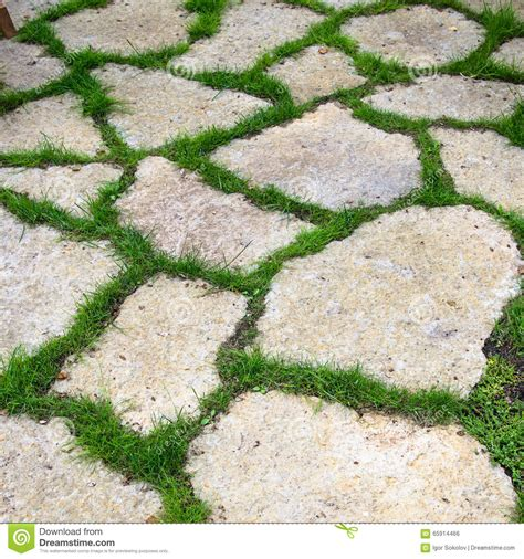 voie des dalles de chaux dans le jardin photo stock