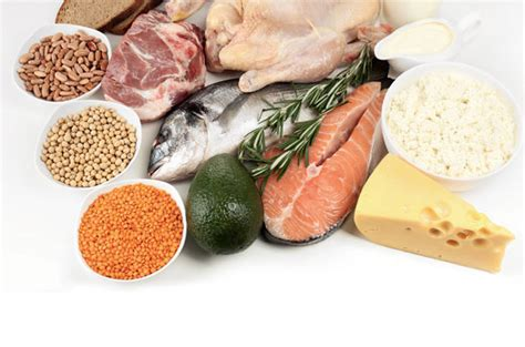 alimenti con piu proteine la ricerca delle proteine di maurizio de pasquale