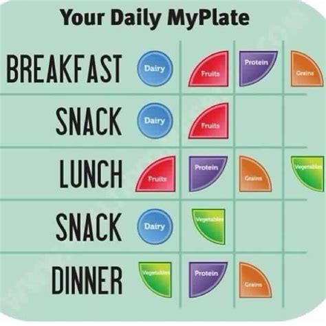 guide to your best my daily plate health and fitness plates