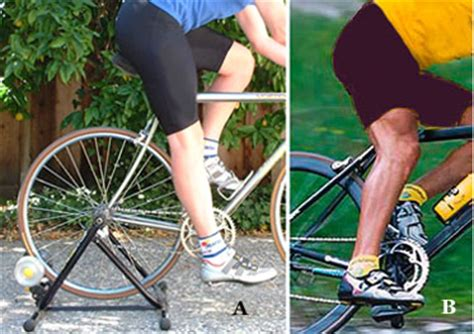 mountain bike seat height adjustment how to fit your bicycle wheel world bike shops road
