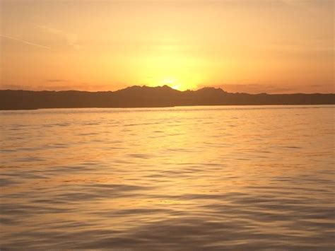 sunset havasu boat tours sunset charter tour picture of sunset charter tour co