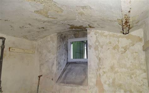 sauna im keller feuchtigkeit elkinet fachgerechte kellerabdichtung isolierung