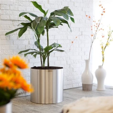 Indoor Planters by Large Round Stainless Steel Blumentopf Planter