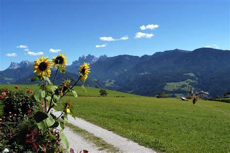 Appartamenti Alto Adige Vacanze by Appartamento A Velturno Vacanze In Alto Adige