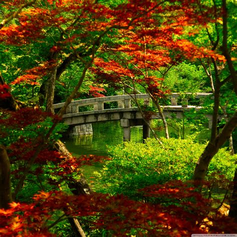 green japanese wallpaper 40 free hd retina display ipad 3 wallpapers inspirationfeed