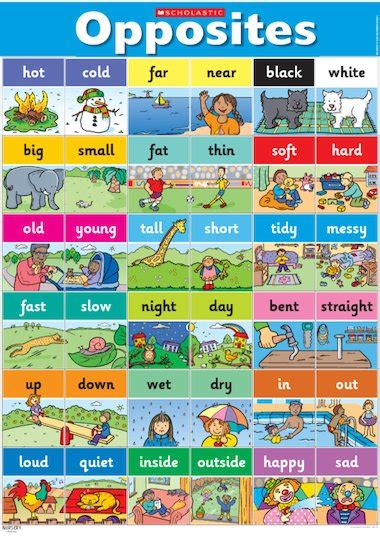 opposites poster early years teaching resource scholastic