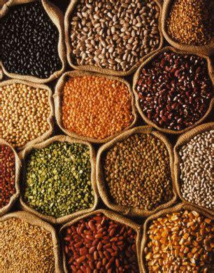 imagenes de semillas varias construye tu propio banco de semillas lo que podemos hacer