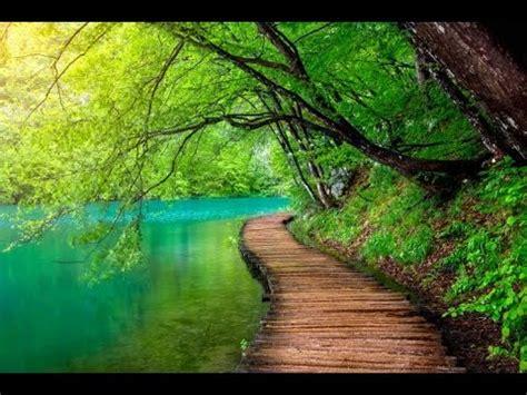 healing meditation  relaxing    stress
