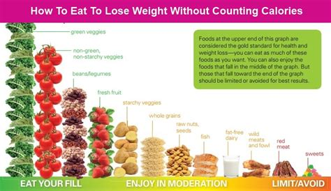10 Foods To Eat To Lose Weight by Foods To Eat To Lose Weight Driverlayer Search Engine