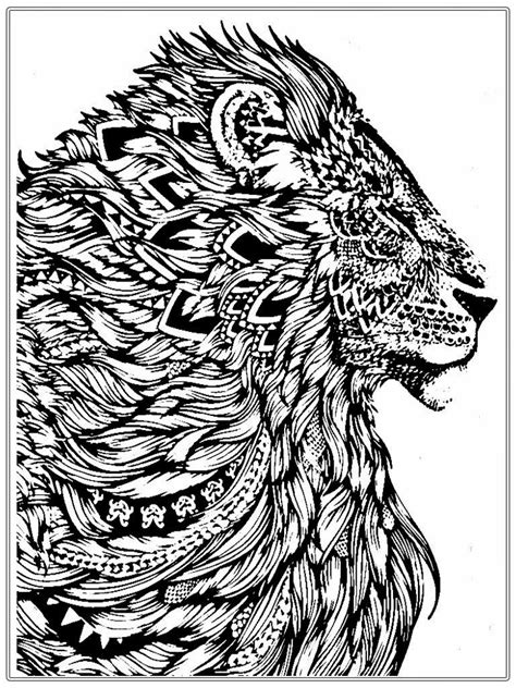 lion coloring pages for adults realistic lion adult