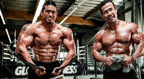 aesthetics  quality muscle muscle fitness